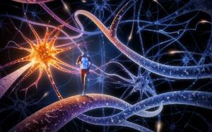 Running inside a brain